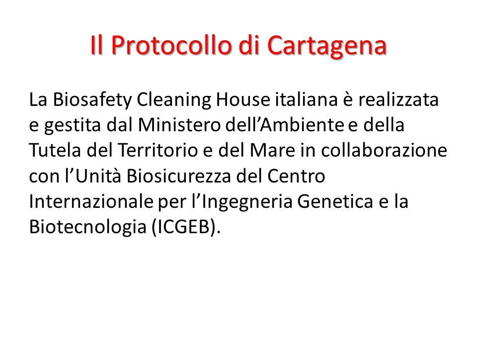 La Biosafety Cleaning House italiana è realizzata e gestita dal Ministero dell'Ambiente e della Tutela del Territorio e del Mare in collaborazione con