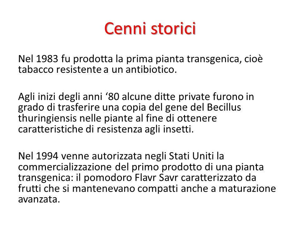 Cenni storici Nel 1983 fu prodotta la prima pianta transgenica, cioè tabacco resistente a un antibiotico. Agli inizi degli anni '80 alcune ditte priva