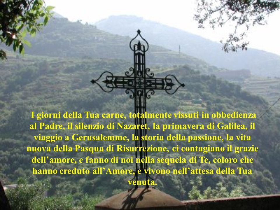 . I giorni della Tua carne, totalmente vissuti in obbedienza al Padre, il silenzio di Nazaret, la primavera di Galilea, il viaggio a Gerusalemme, la s