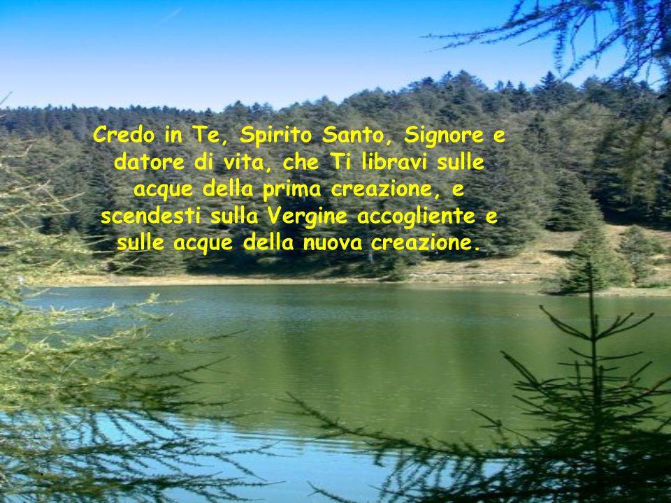 . Credo in Te, Spirito Santo, Signore e datore di vita, che Ti libravi sulle acque della prima creazione, e scendesti sulla Vergine accogliente e sull