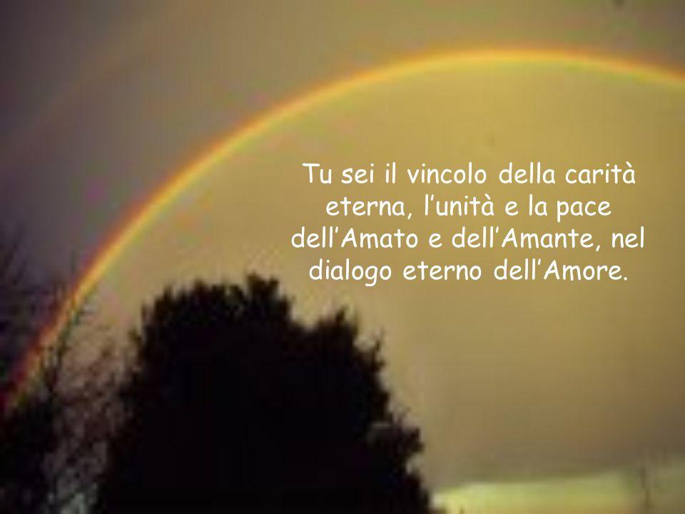 . Tu sei il vincolo della carità eterna, l'unità e la pace dell'Amato e dell'Amante, nel dialogo eterno dell'Amore.