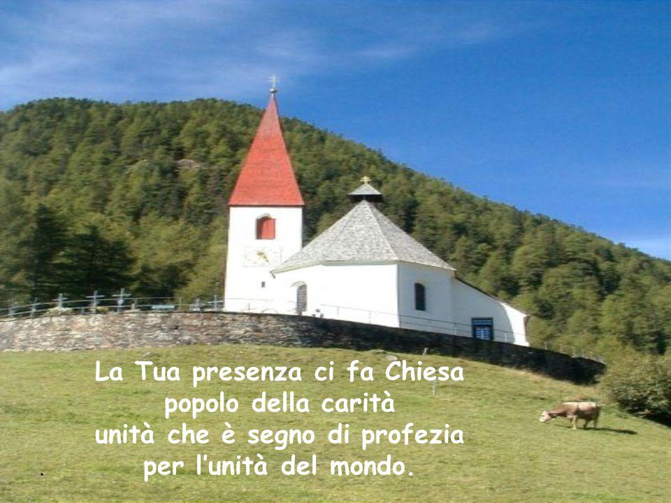 . La Tua presenza ci fa Chiesa popolo della carità unità che è segno di profezia per l'unità del mondo.