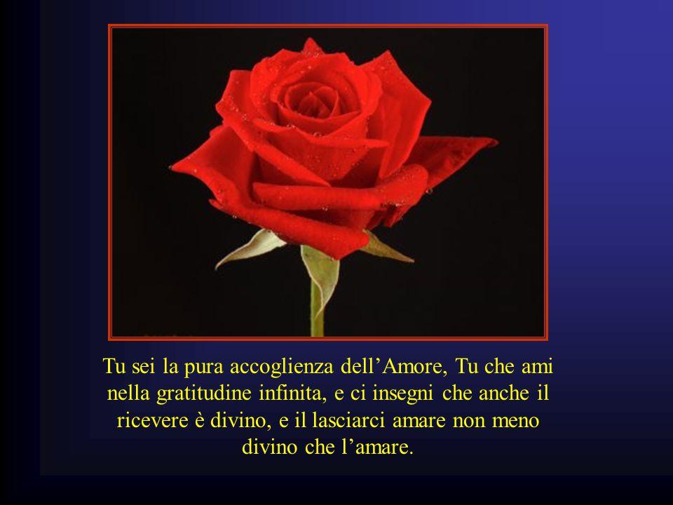 Tu sei la pura accoglienza dell'Amore, Tu che ami nella gratitudine infinita, e ci insegni che anche il ricevere è divino, e il lasciarci amare non me