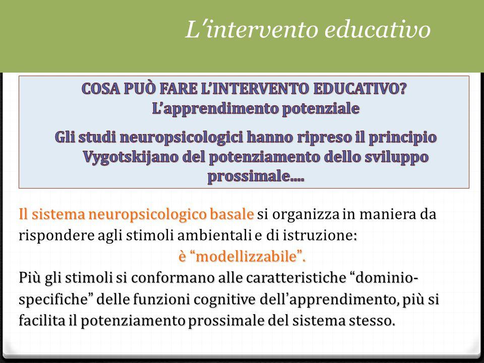 Il sistema neuropsicologico basale : Il sistema neuropsicologico basale si organizza in maniera da rispondere agli stimoli ambientali e di istruzione: