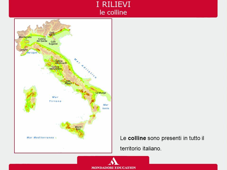 Le colline sono presenti in tutto il territorio italiano. I RILIEVI le colline