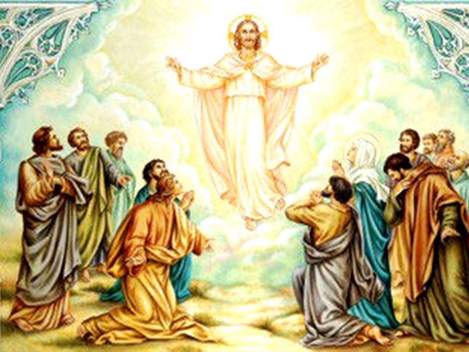 1 In quel tempo, [Gesù apparve agli Undici] e disse loro: «Andate in tutto il mondo 2 e proclamate il Vangelo a ogni creatura. 3 Chi crederà 4 e sarà