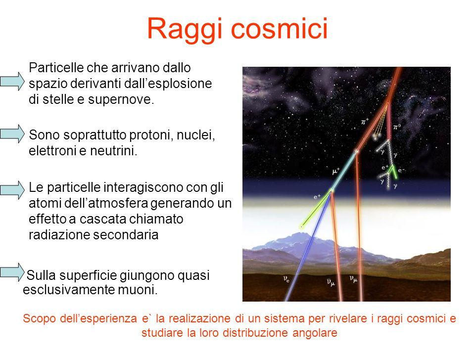 Raggi cosmici Sulla superficie giungono quasi esclusivamente muoni.