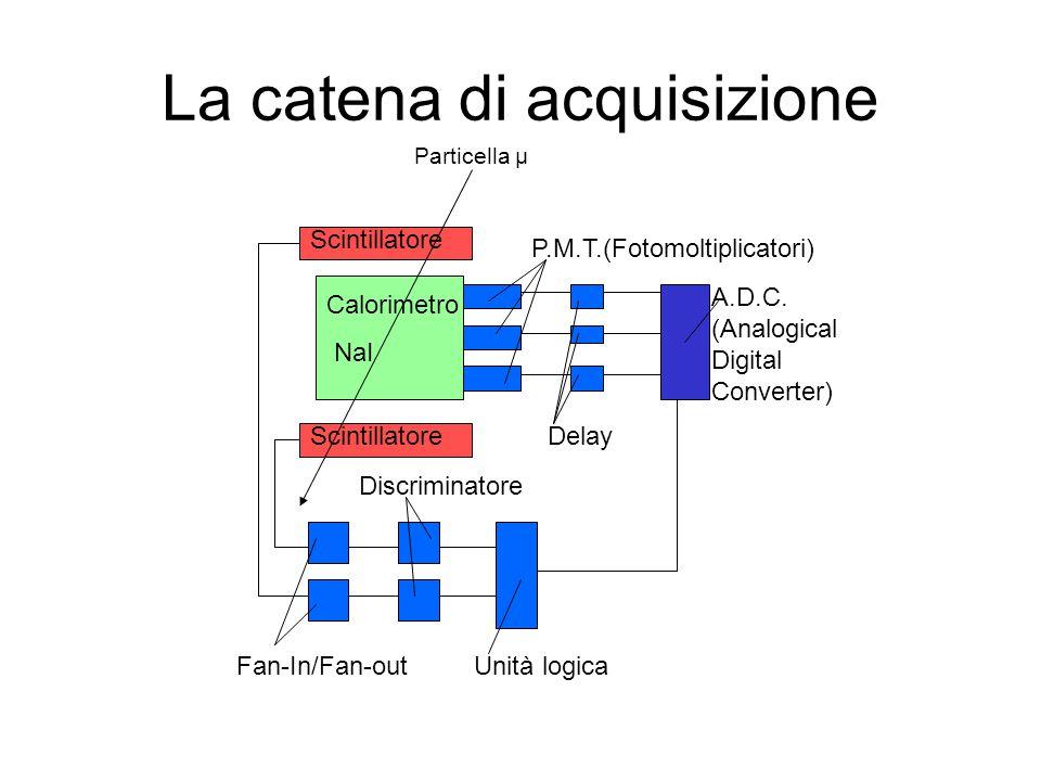 La catena di acquisizione Scintillatore Calorimetro NaI Scintillatore P.M.T.(Fotomoltiplicatori) Delay A.D.C.