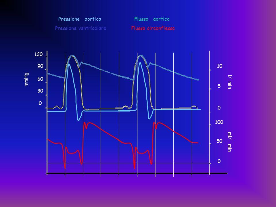 0 50 100 0 5 10 Pressione aortica Pressione ventricolare Flusso aortico Flusso circonflessa 0 30 60 90 120 mmHg l/ min ml/ min