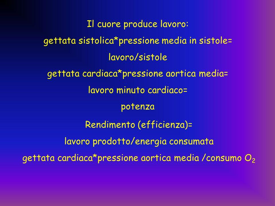 Il cuore produce lavoro: gettata sistolica*pressione media in sistole= lavoro/sistole gettata cardiaca*pressione aortica media= lavoro minuto cardiaco= potenza Rendimento (efficienza)= lavoro prodotto/energia consumata gettata cardiaca*pressione aortica media /consumo O 2