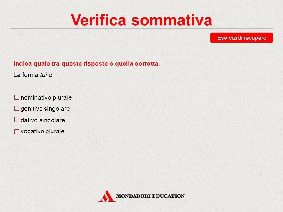 Verifica sommativa Esercizi di recupero Riordina la declinazione del plurale del pronome vos, «voi».