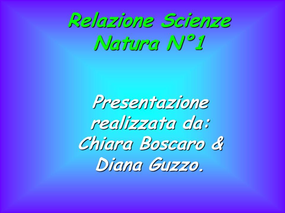 Relazione Scienze Natura N°1 Presentazione realizzata da: Chiara Boscaro & Diana Guzzo.