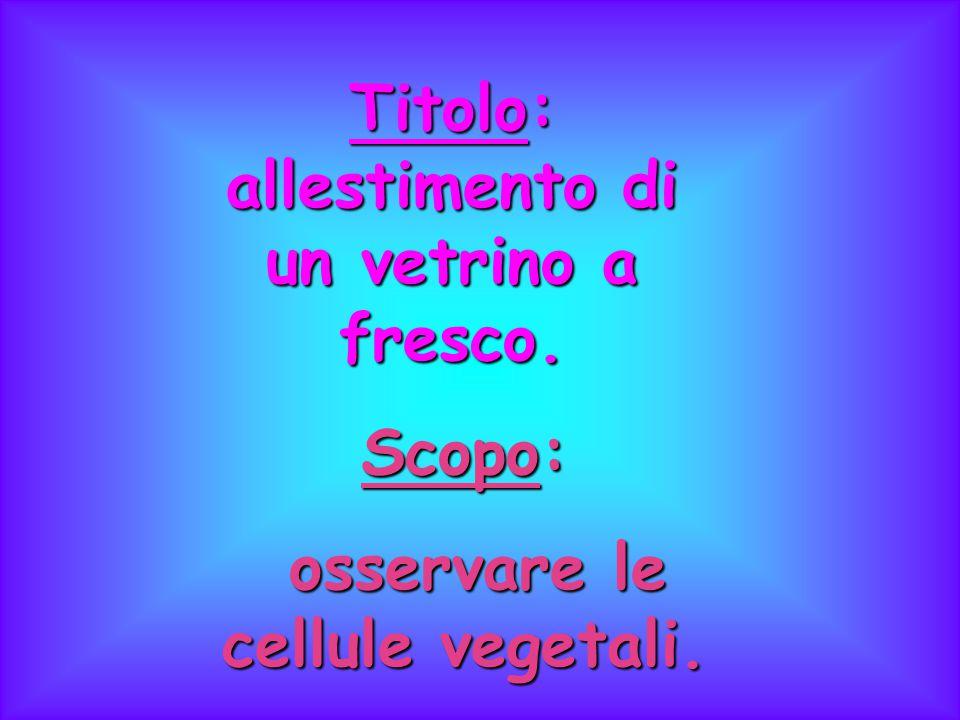 Materiale: Muschio;Muschio; Pinzette;Pinzette; Vetrino coprioggetti;Vetrino coprioggetti; Vetrino portaoggetti;Vetrino portaoggetti; Acqua.Acqua.