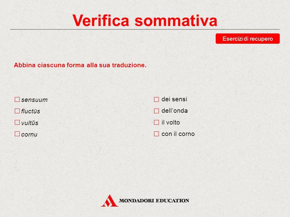 Verifica sommativa Scegli la traduzione corretta della forma impetui. gli attacchi dell'attacco all'attacco con l'attacco Esercizi di recupero