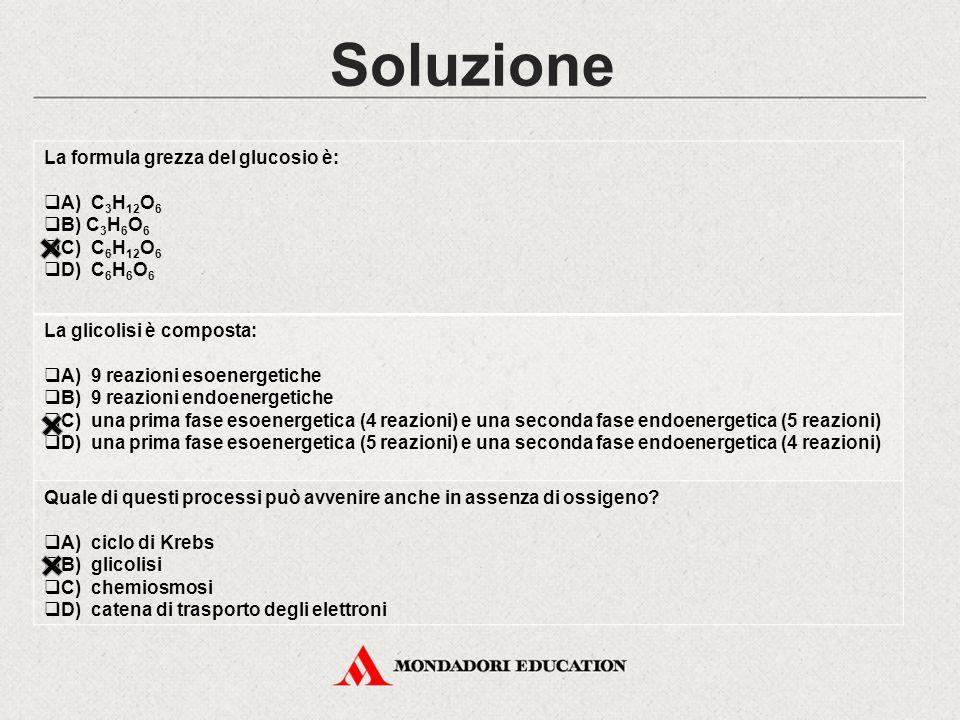 Soluzione La formula grezza del glucosio è:  A) C 3 H 12 O 6  B) C 3 H 6 O 6  C) C 6 H 12 O 6  D) C 6 H 6 O 6 La glicolisi è composta:  A) 9 reaz