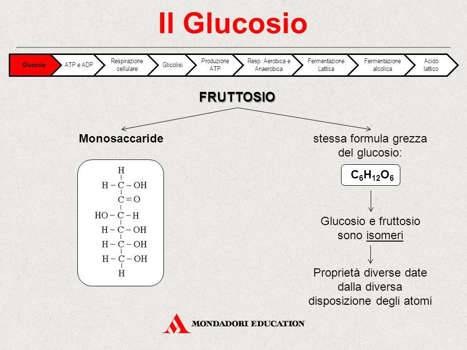 FRUTTOSIO Il Glucosio Monosaccaridestessa formula grezza del glucosio: Glucosio e fruttosio sono isomeri C 6 H 12 O 6 Proprietà diverse date dalla div