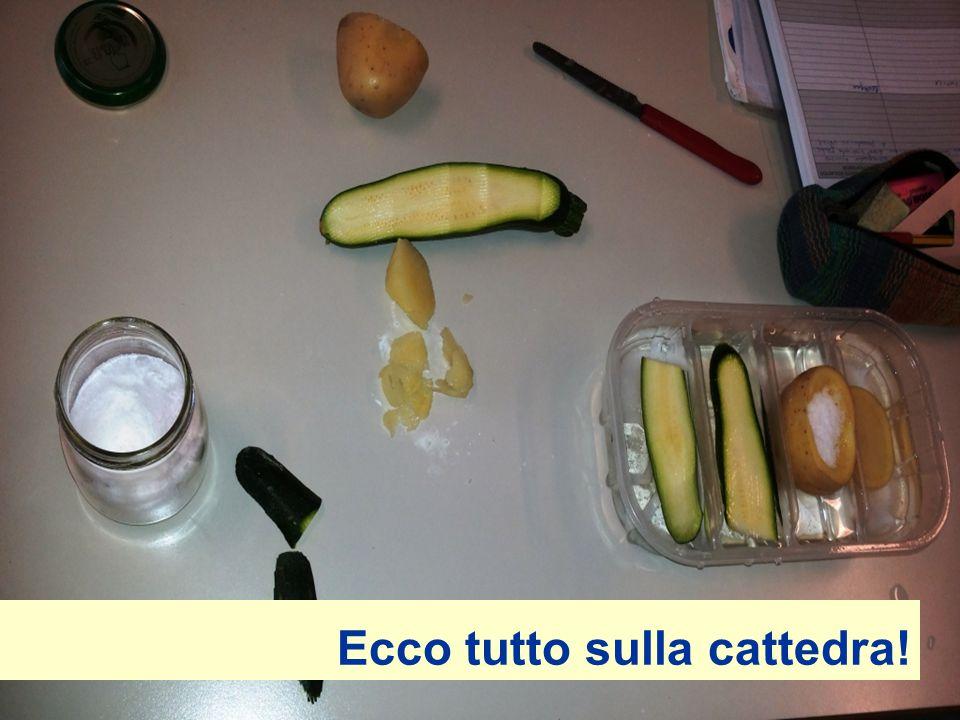 Procedimento VVersare l'acqua nel contenitore MMettere un po' di sale in due scomparti TTagliare due fette di zucchina e una fetta di patata SScavare una barchetta in mezza patata e riempirla con il sale