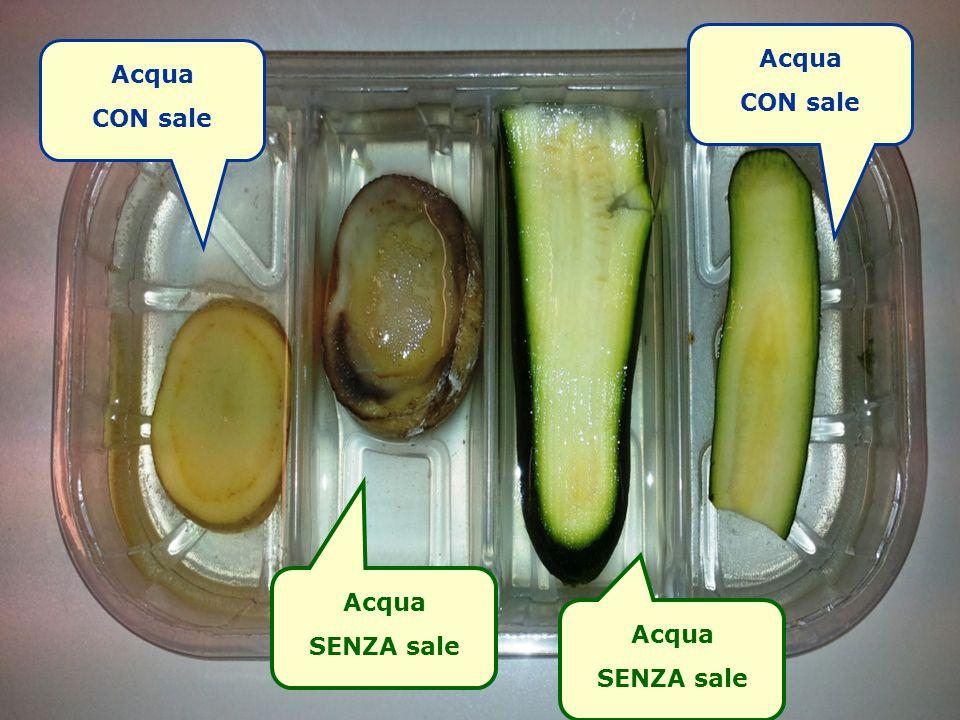 Acqua CON sale Acqua SENZA sale Acqua CON sale Acqua SENZA sale