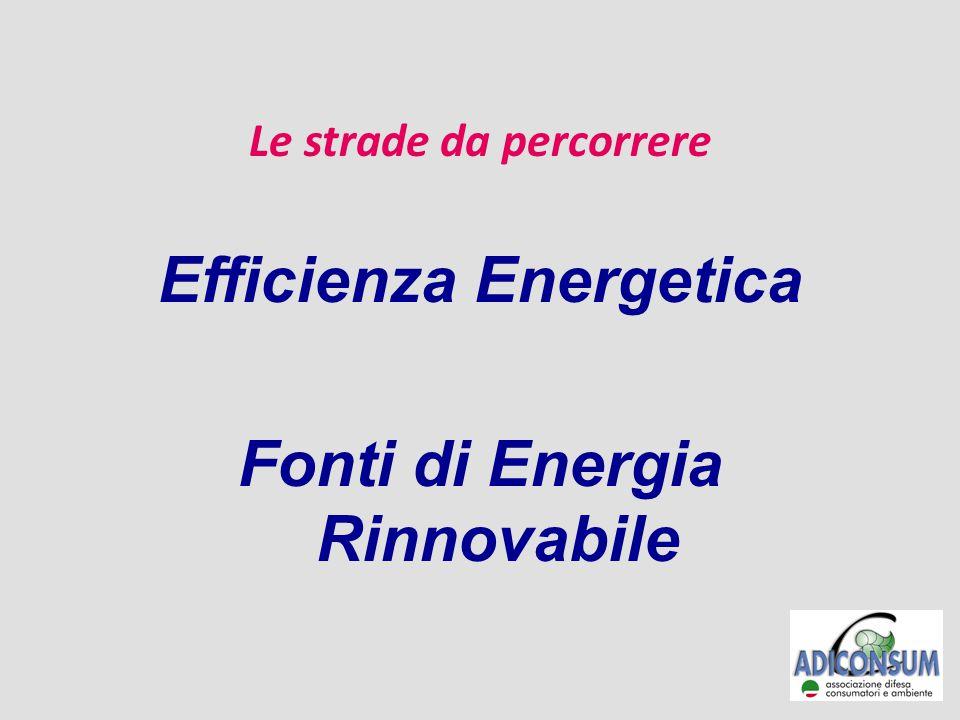 Le strade da percorrere Efficienza Energetica Fonti di Energia Rinnovabile