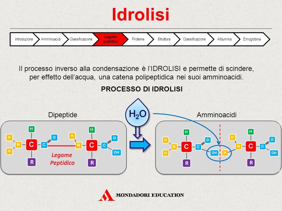Il processo inverso alla condensazione è l'IDROLISI e permette di scindere, per effetto dell'acqua, una catena polipeptidica nei suoi amminoacidi. PRO