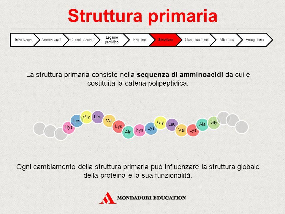 Struttura primaria IntroduzioneAmminoacidiClassificazione Legame peptidico Proteine Struttura ClassificazioneAlbuminaEmoglobina HysLysGlyLeuValLysAlah