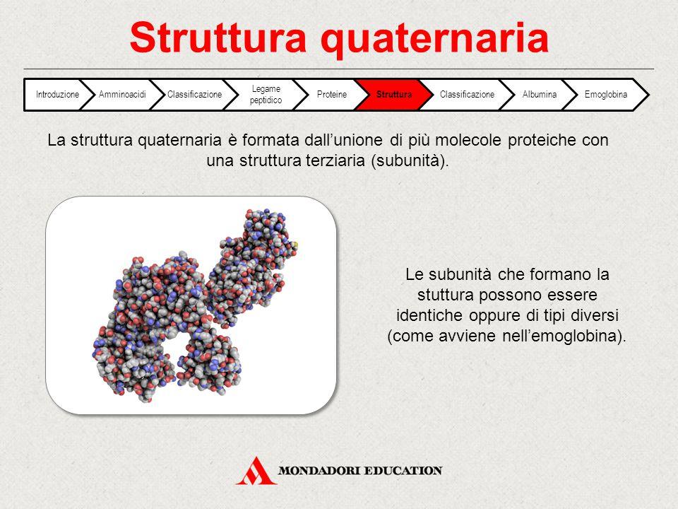 Struttura quaternaria IntroduzioneAmminoacidiClassificazione Legame peptidico Proteine Struttura ClassificazioneAlbuminaEmoglobina La struttura quater