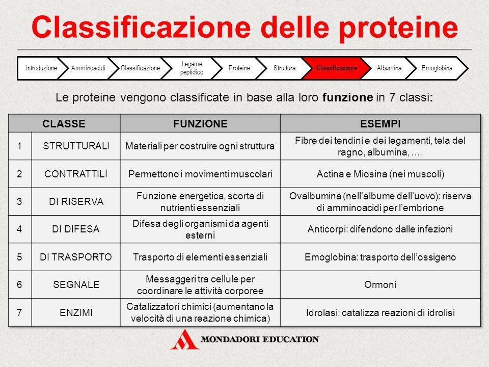 Classificazione delle proteine IntroduzioneAmminoacidiClassificazione Legame peptidico ProteineStruttura Classificazione AlbuminaEmoglobina Le protein