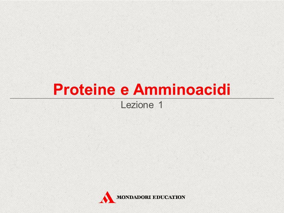 Struttura secondaria IntroduzioneAmminoacidiClassificazione Legame peptidico Proteine Struttura ClassificazioneAlbuminaEmoglobina La struttura secondaria consiste nella forma che assume la catena polipeptidica ripiegandosi su se stessa.