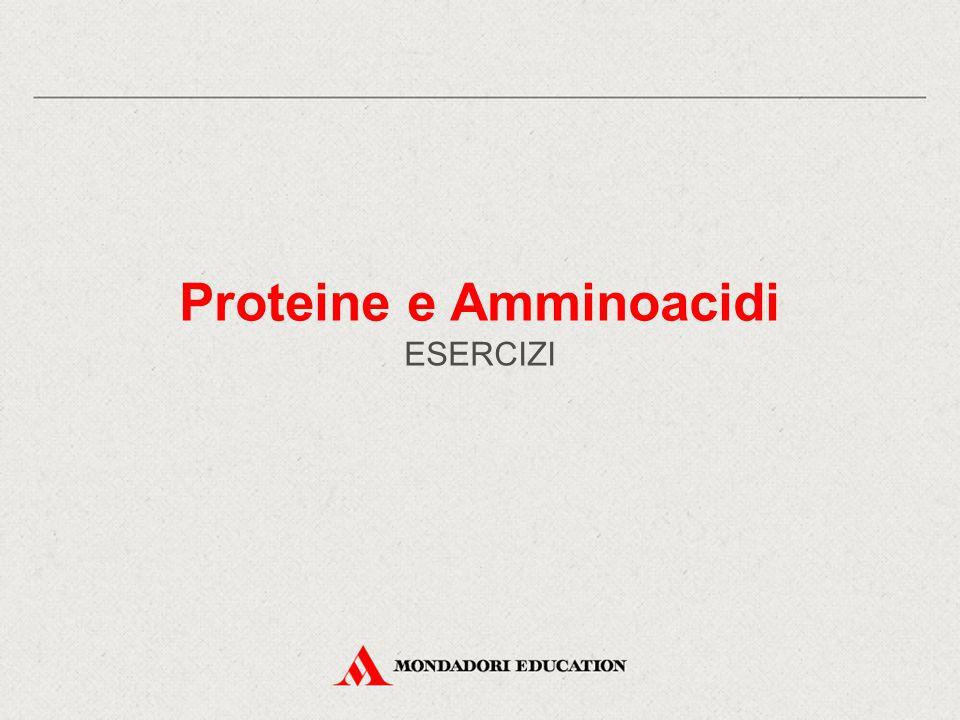 Proteine e Amminoacidi ESERCIZI
