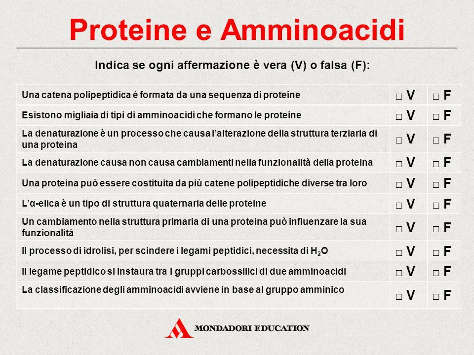 Proteine e Amminoacidi Indica se ogni affermazione è vera (V) o falsa (F): Una catena polipeptidica è formata da una sequenza di proteine □ V□ F Esist