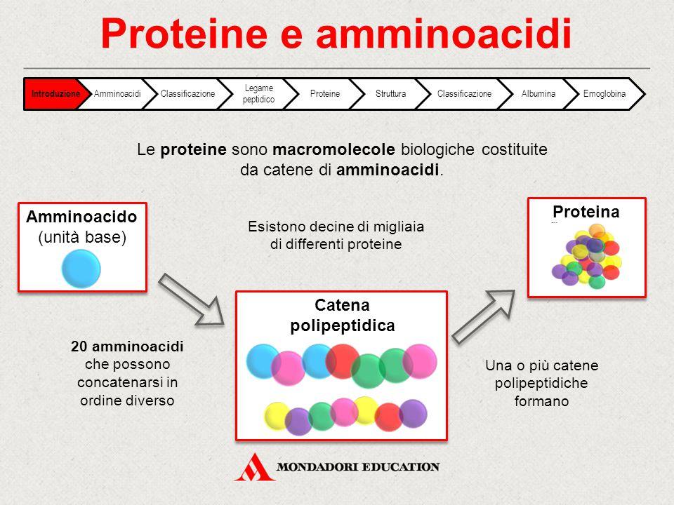 Proteina Le proteine sono macromolecole biologiche costituite da catene di amminoacidi. Esistono decine di migliaia di differenti proteine 20 amminoac