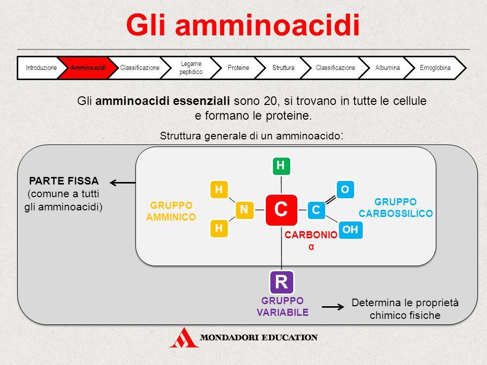 Alcuni amminoacidi C N HH C OOH H H GLICINA C N HH C OOH H HC CH3 OH TREONINA LISINA Introduzione Amminoacidi Classificazione Legame peptidico ProteineStrutturaClassificazioneAlbuminaEmoglobina