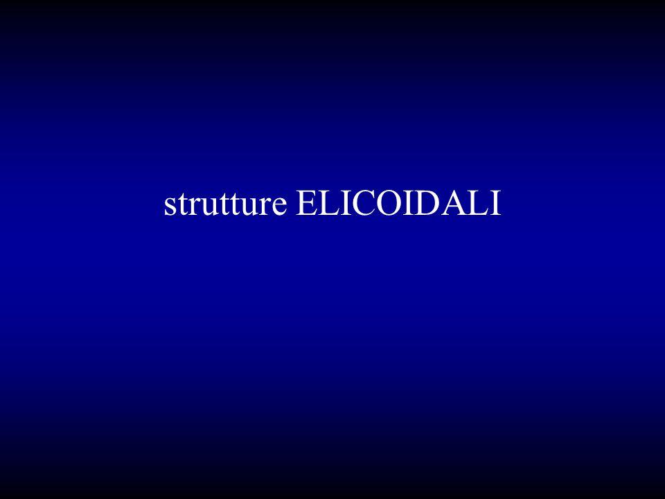strutture ELICOIDALI