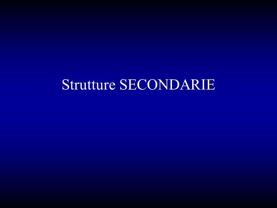 Strutture SECONDARIE