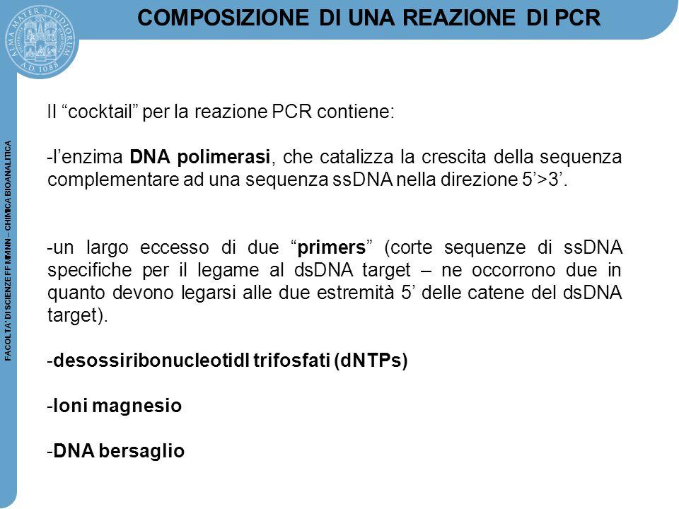 """FACOLTA' DI SCIENZE FF MM NN – CHIMICA BIOANALITICA Il """"cocktail"""" per la reazione PCR contiene: -l'enzima DNA polimerasi, che catalizza la crescita de"""