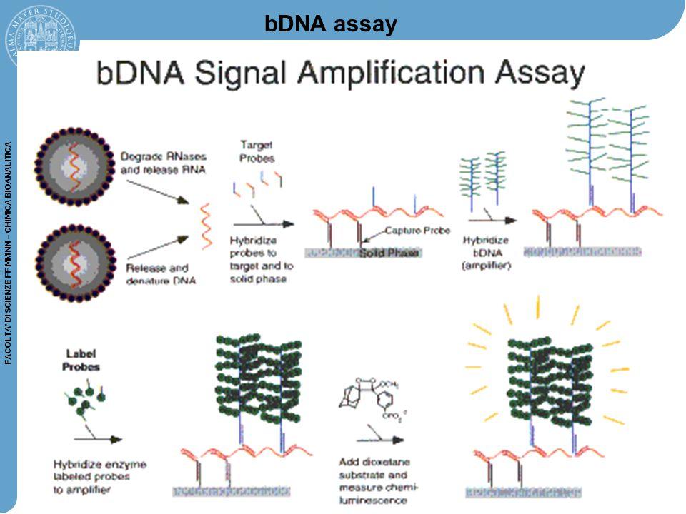 FACOLTA' DI SCIENZE FF MM NN – CHIMICA BIOANALITICA Durante lo step di annealing PCR, la sonda ibridizza alla sua sequenza target: ciò separa il colorante fluorescente dal reporter, producendo un segnale fluorescente La quantità di fluorescenza prodotta ad ogni ciclo, o dopo la PCR, dipende dalla quantità di prodotto specifico in quel dato momento A differenza delle sonde TaqMan, le molecular beacons non vengono distrutte durante durante la reazione di amplificazione per vengono distrutte durante durante la reazione di amplificazione per cui possono reibridizzarsi durante il successivo ciclo Amplicon FRET EXCITATIONE ANNEALING Molecular beacons