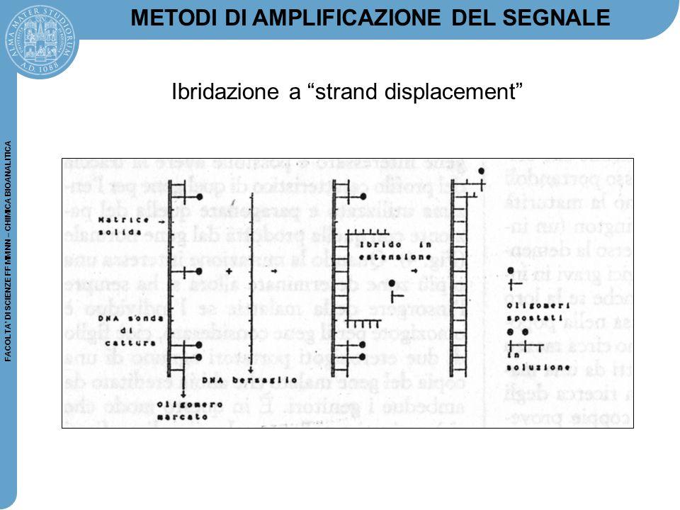 """FACOLTA' DI SCIENZE FF MM NN – CHIMICA BIOANALITICA METODI DI AMPLIFICAZIONE DEL SEGNALE Ibridazione a """"strand displacement"""""""