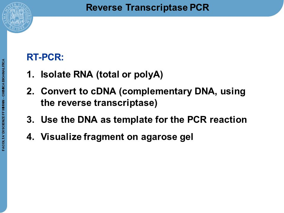FACOLTA' DI SCIENZE FF MM NN – CHIMICA BIOANALITICA RT-PCR: 1.Isolate RNA (total or polyA) 2.Convert to cDNA (complementary DNA, using the reverse tra