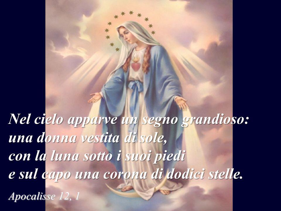 Quinto Mistero: Maria è incoronata Regina del Cielo e della Terra