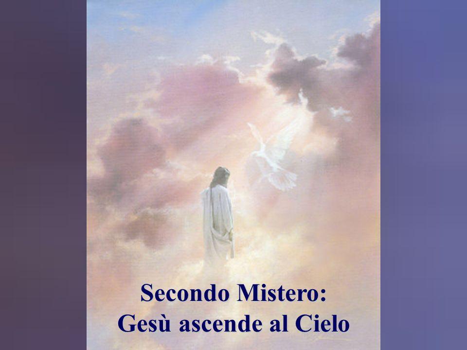 """L'Angelo disse alle donne: """"Non abbiate paura, voi! So che cercate Gesù il crocifisso. Non è qui. È risorto, come aveva detto."""" Matteo 28, 5-6 Matteo"""