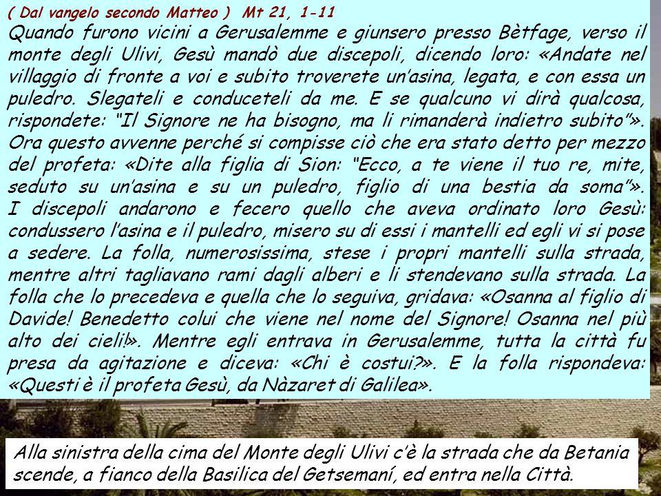 """Domenica delle Palme 16 marzo 2008 Ingresso di Gesù in Gerusalemme. Pala del XIIsec. Sant Andreu de Sagàs. Catalogna. Anno A Musica: """"Via crucis"""" di H"""
