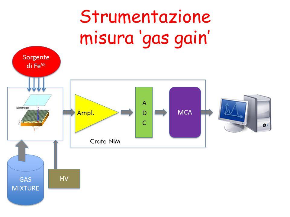 Strumentazione misura 'gas gain' Ampl. Sorgente di Fe 55 GAS MIXTURE GAS MIXTURE MCA Crate NIM HV