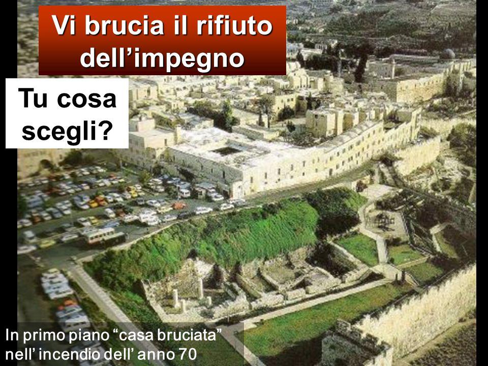 Allora il re si indignò: mandò le sue truppe, fece uccidere quegli assassini e diede alle fiamme la loro città.