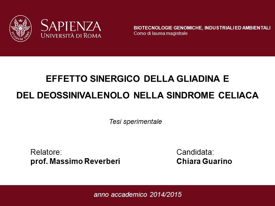 RISPOSTA INFIAMMATORIA (COX-2) EFFETTO DELLA GLIADINA E DEL DEOSSINIVALENOLO NELLA SINDROME CELIACA Tesi di Chiara Guarino, Relatore: prof.