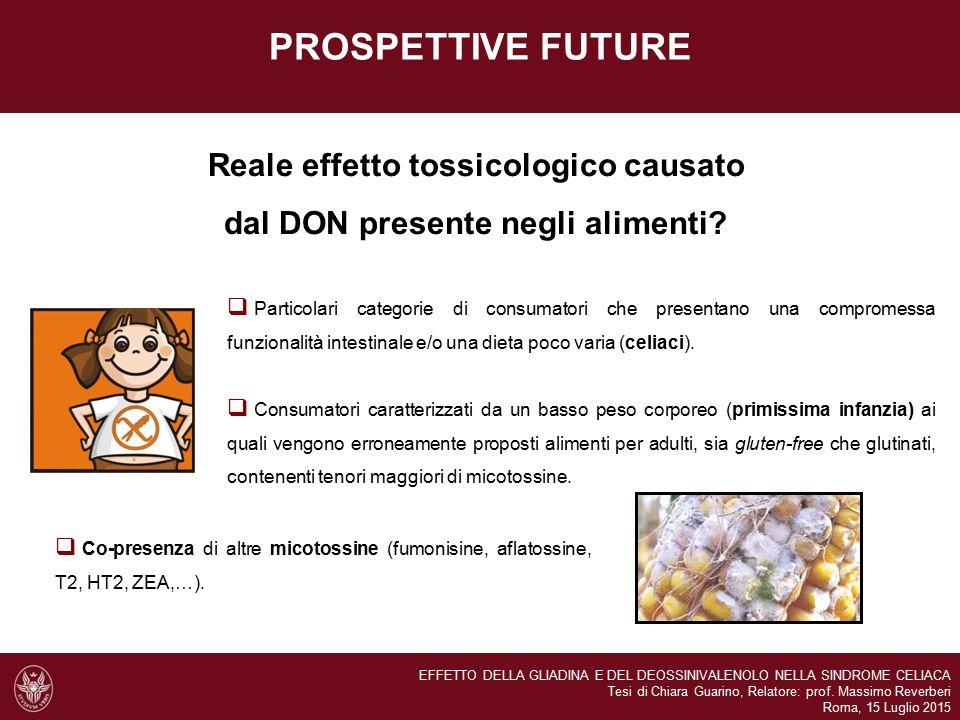 PROSPETTIVE FUTURE Reale effetto tossicologico causato dal DON presente negli alimenti.