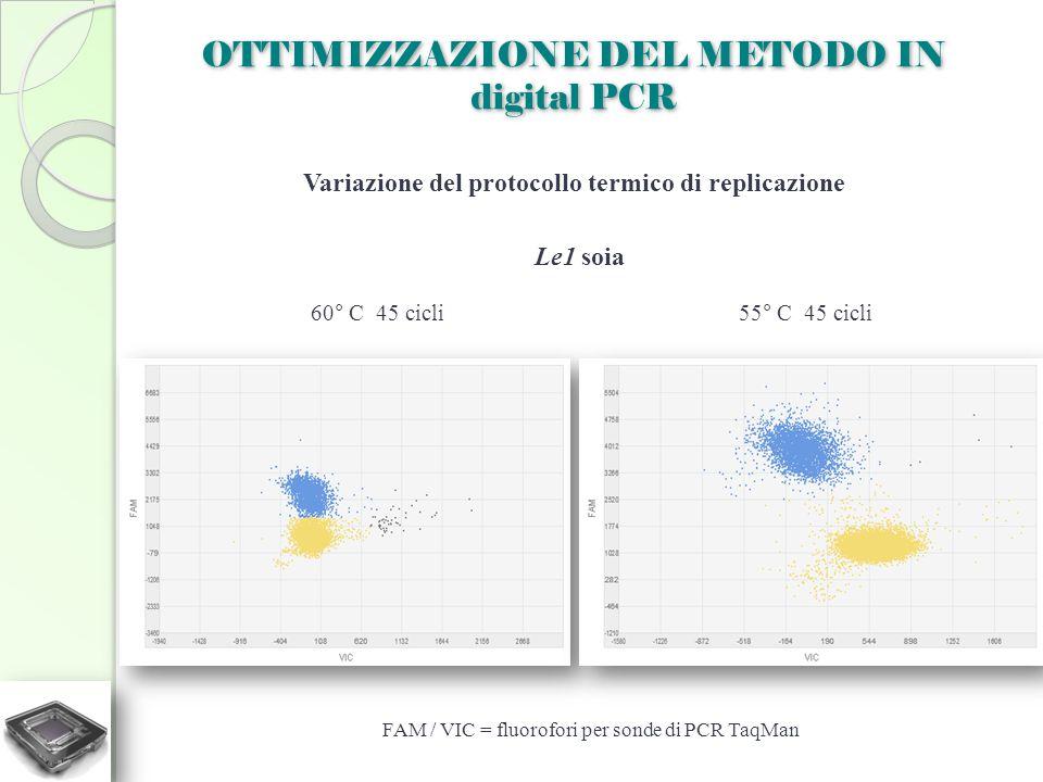 OTTIMIZZAZIONE DEL METODO IN digital PCR Variazione del protocollo termico di replicazione 60° C 45 cicli55° C 45 cicli Le1 soia FAM / VIC = fluorofor