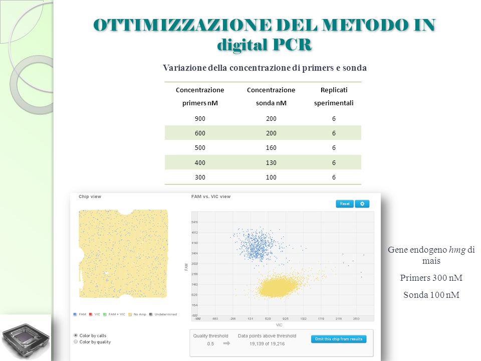 OTTIMIZZAZIONE DEL METODO IN digital PCR Variazione della concentrazione di primers e sonda Concentrazione primers nM Concentrazione sonda nM Replicat