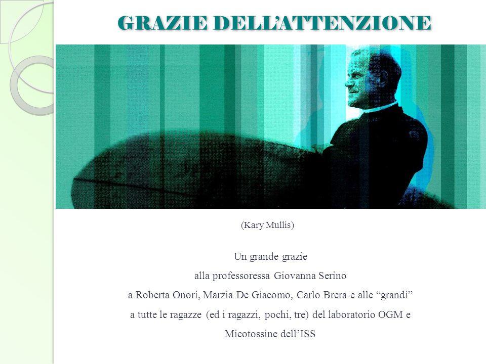 """GRAZIE DELL'ATTENZIONE (Kary Mullis) Un grande grazie alla professoressa Giovanna Serino a Roberta Onori, Marzia De Giacomo, Carlo Brera e alle """"grand"""