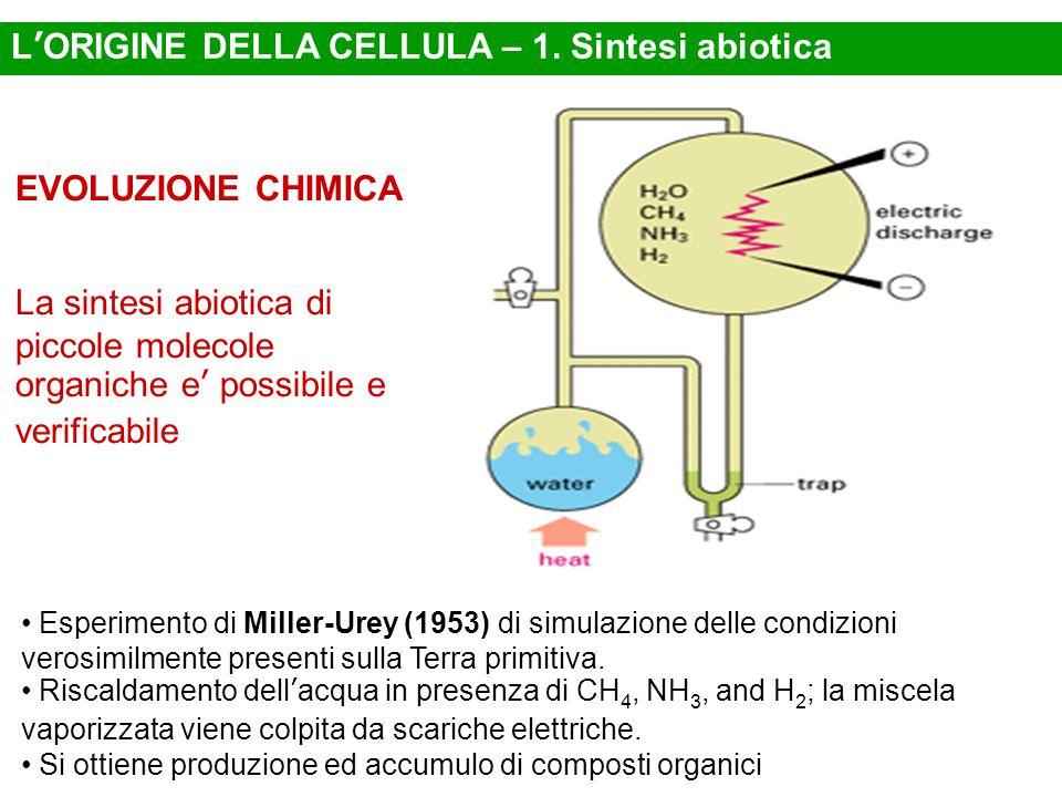 Esperimento di Miller-Urey (1953) di simulazione delle condizioni verosimilmente presenti sulla Terra primitiva. Riscaldamento dell'acqua in presenza