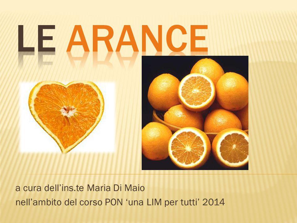 a cura dell'ins.te Maria Di Maio nell'ambito del corso PON 'una LIM per tutti' 2014